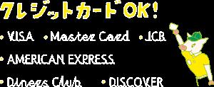 クレジットカード(VISA、Master Card、JCB、AMERICAN EXPRESS、Diners Club、DISCOVER)をご利用いただけます