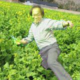 トン十郎の写真