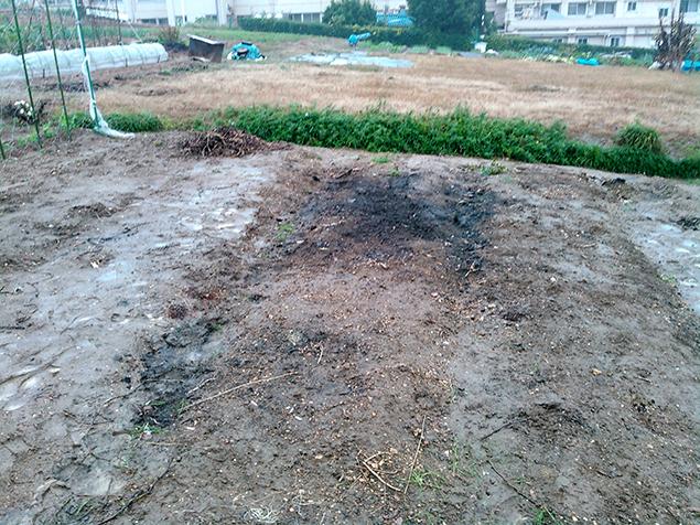 作業が完了し、畑の真ん中の不用品が一つもなくなった写真