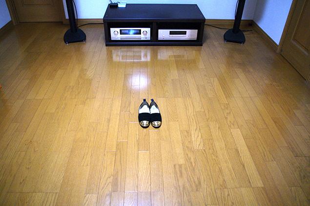 リビングの真ん中に靴を1足置いた写真