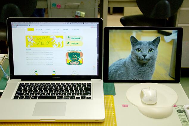 MacBook Proと、猫の画像を映したiPad Proを並べた写真