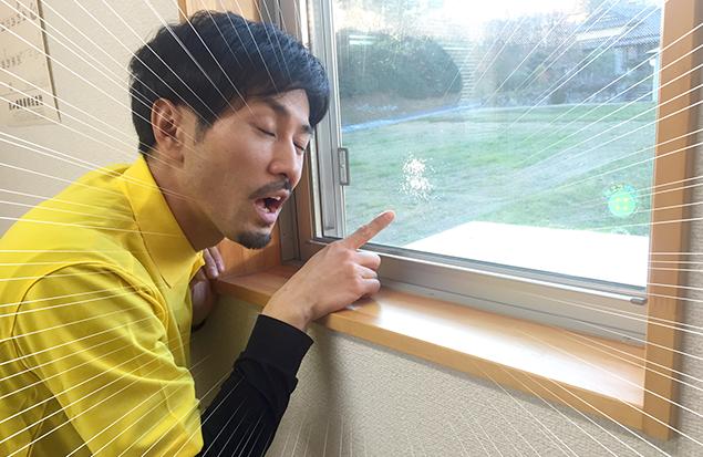 トン太が窓の汚れを見てゲンナリしている写真