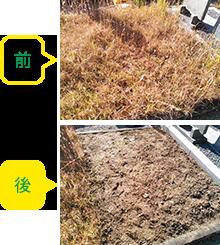 墓地の除草 事前事後の写真