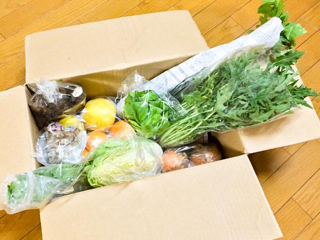 宅配の有機野菜が入った段ボールの写真