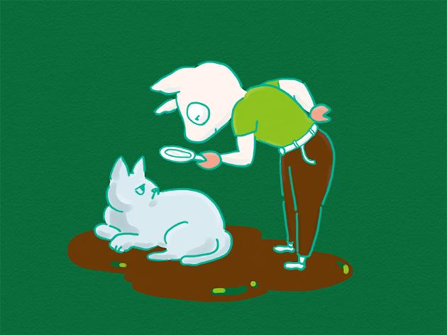 猫の体に神を探しているイラスト