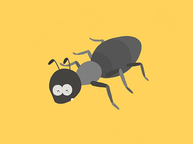 蟻になったトン十郎のイラスト