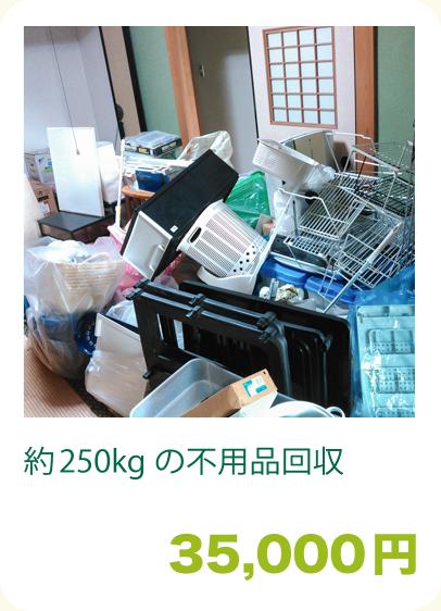 約250kgの不用品回収:35,000円