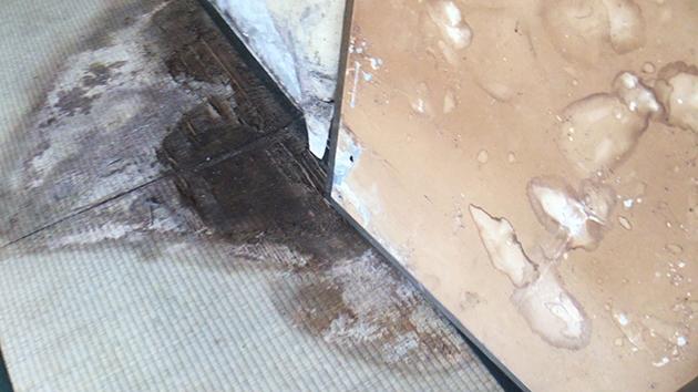 ふすまや畳が損傷している写真