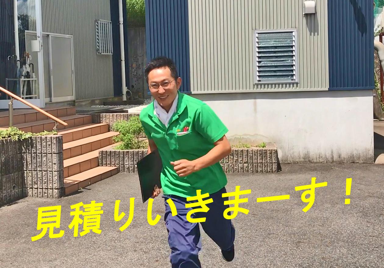スタッフ岡本の写真