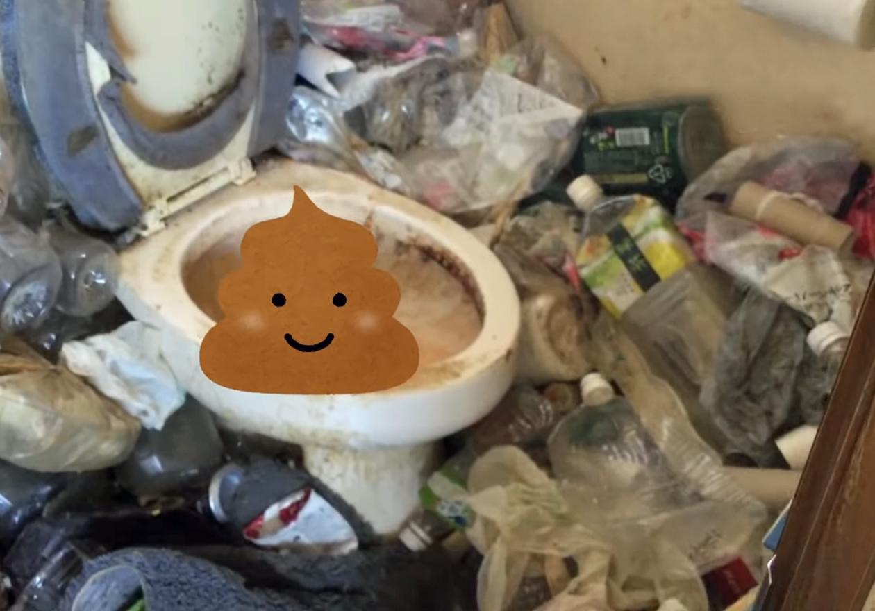 舞い散る羽毛と釣り道具の汚部屋!作業前、トイレの画像