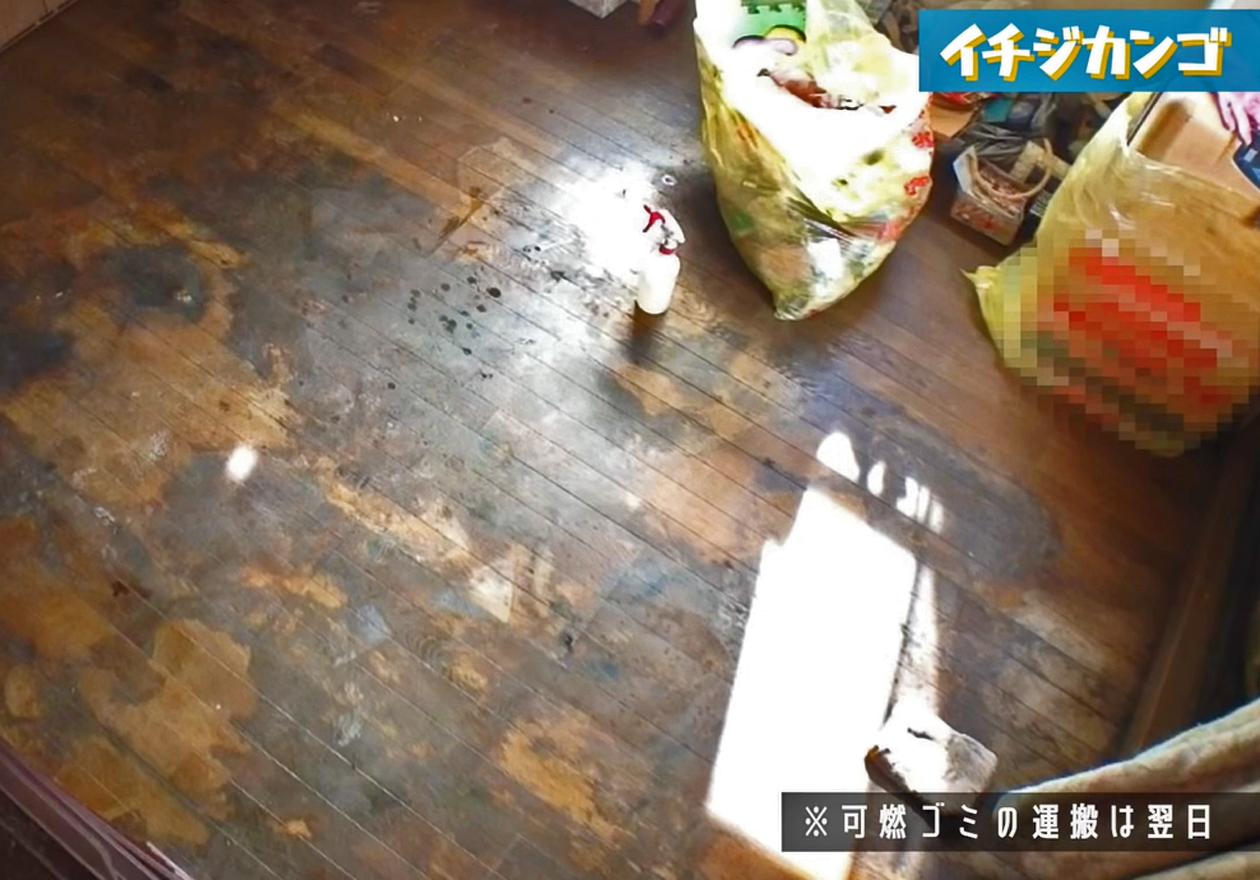 たくさんのモノと犬のフンが散乱したマンションのアフター写真