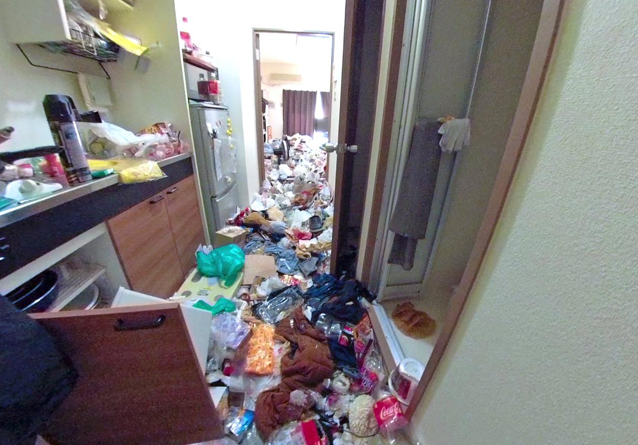 ゴミ屋敷の玄関前から見た写真