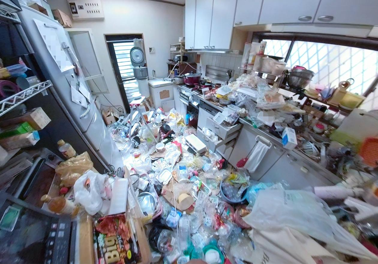 ゴミ屋敷のキッチンの写真