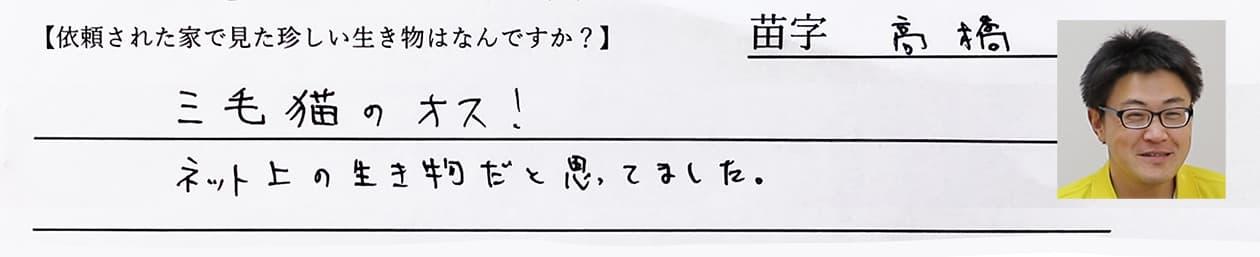 高橋:三毛猫のオス!ネット上の生き物だと思ってました。