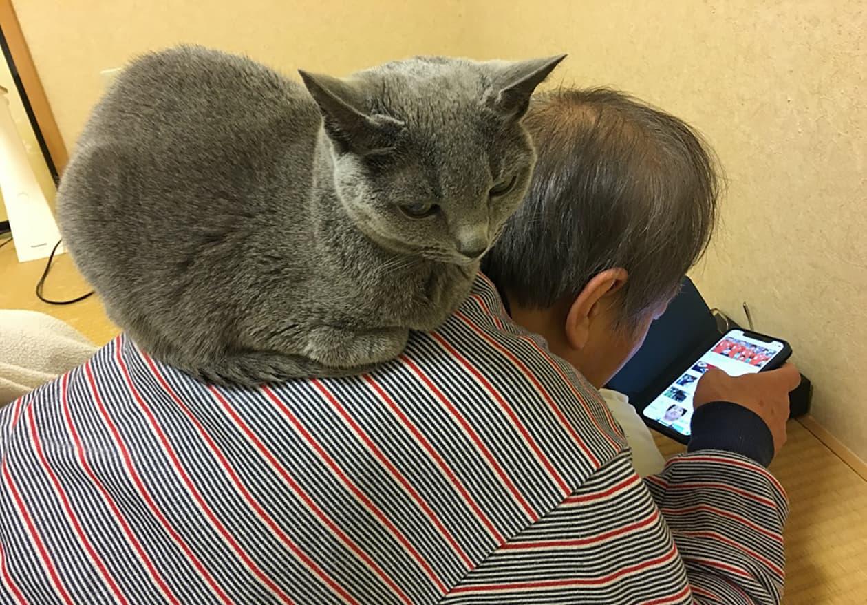猫と一緒にいる写真