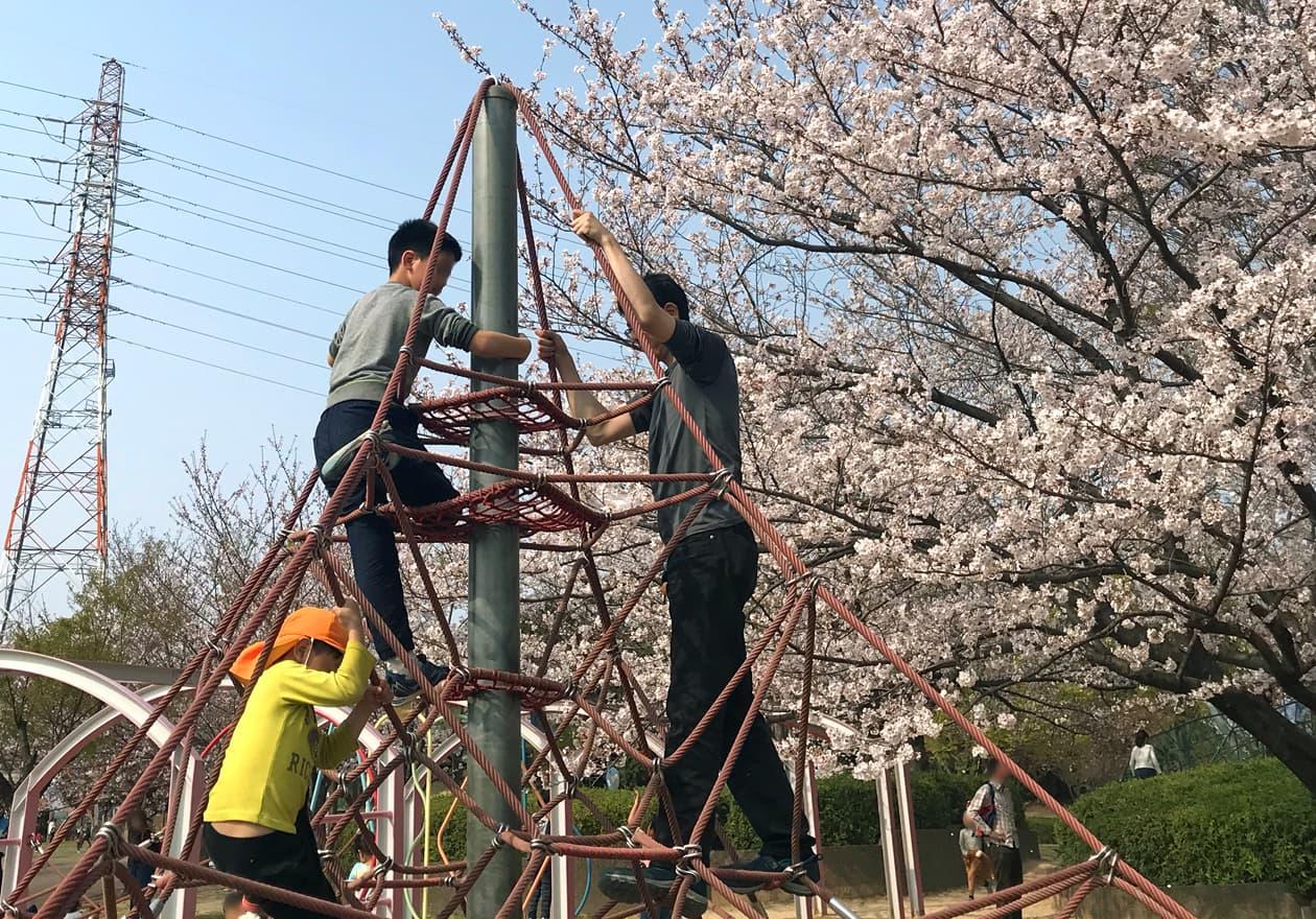 長男や次男と一緒に公園で遊んでいる小田の様子