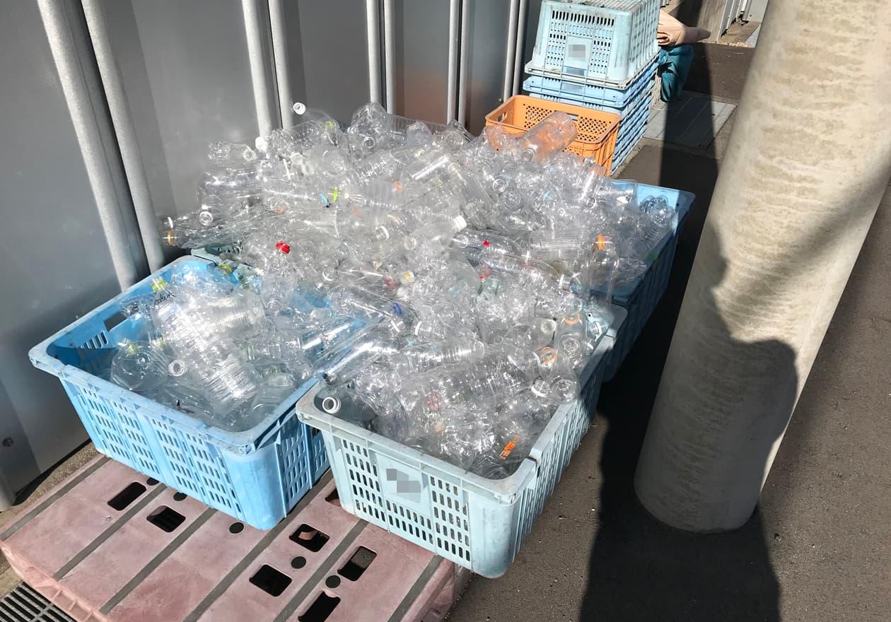 ペットボトルが箱にいっぱい入っている様子