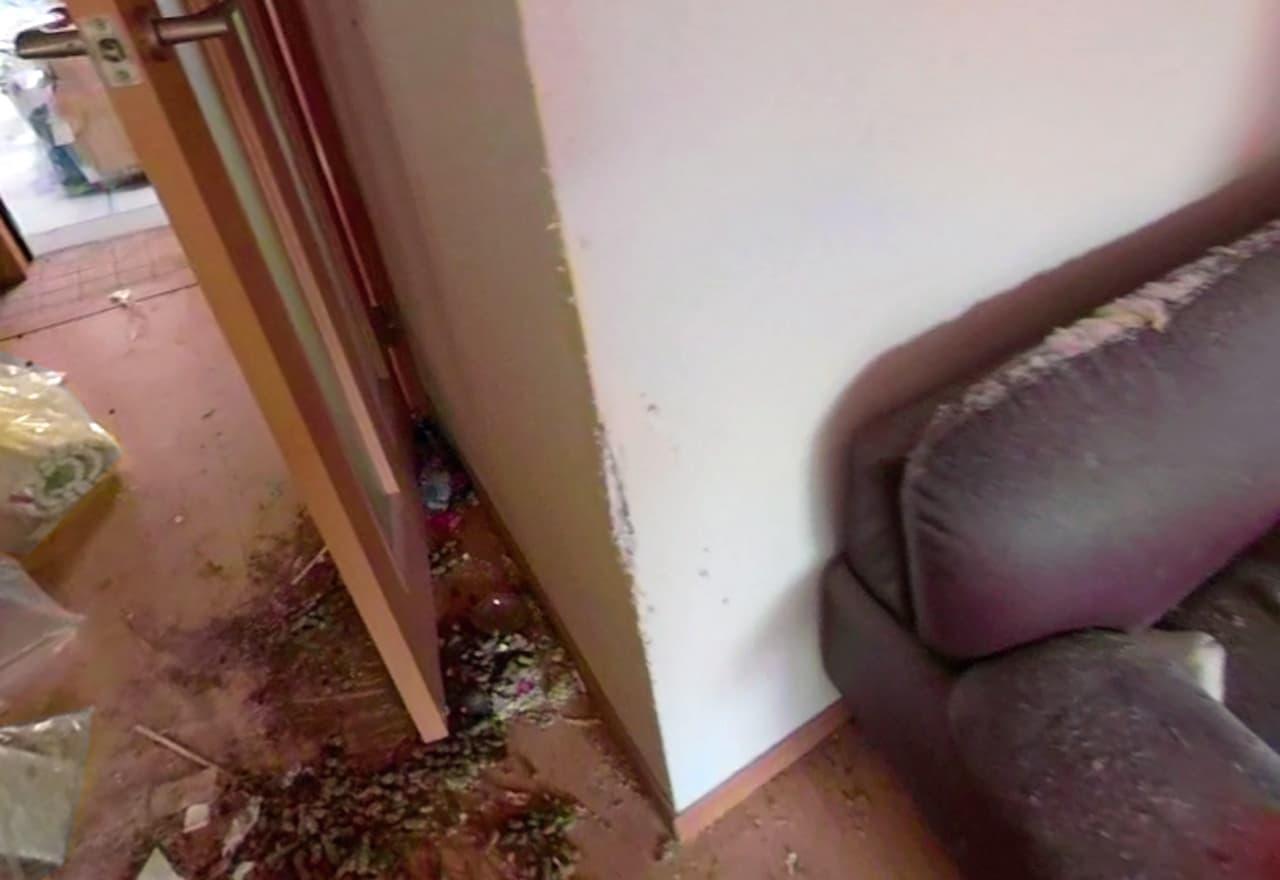 ボロボロになった壁やソファの様子